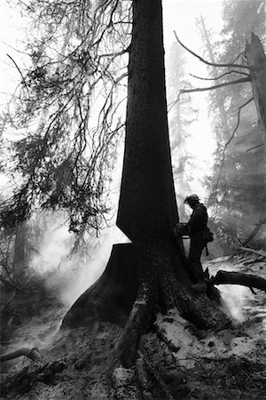 Man Cutting Down a Burning Tree Stock Photo - Rights-Managed, Code: 700-00183186