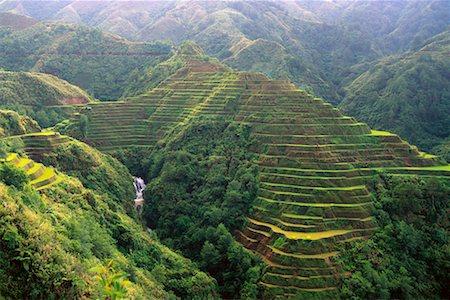 philippine terrace farming - Banaue Rice Terraces Banaue, Ifugao, Philippines Stock Photo - Rights-Managed, Code: 700-00183717
