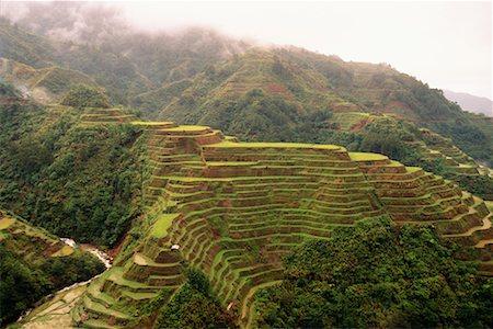 philippine terrace farming - Banaue Rice Terraces Banaue, Ifugao, Philippines Stock Photo - Rights-Managed, Code: 700-00183718