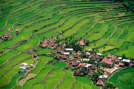philippine terrace farming - Small Terrace-Farming Town Philippines Stock Photo - Rights-Managed, Code: 700-00183720