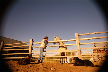 Woman with Dogs and Horse Stock Photo - Rights-Managed, Code: 700-00199702