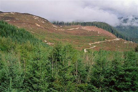 Deforestation British Columbia, Canada Stock Photo - Rights-Managed, Code: 700-00281091