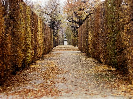 david zimmerman - Schoenbrunn Palace Gardens Vienna, Austria Stock Photo - Rights-Managed, Code: 700-00357093