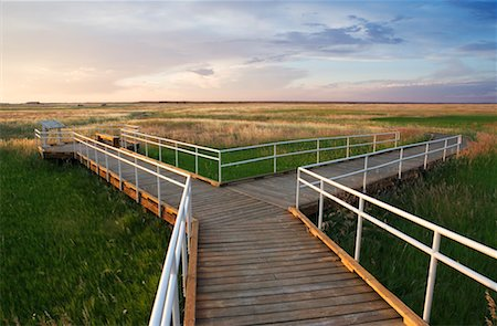 david zimmerman - Walkway Over Grasslands, Badlands National Park, South Dakota, USA Stock Photo - Rights-Managed, Code: 700-00635446