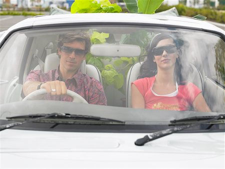 Couple in Car, Plants In Backseat Stock Photo - Rights-Managed, Code: 700-00644020