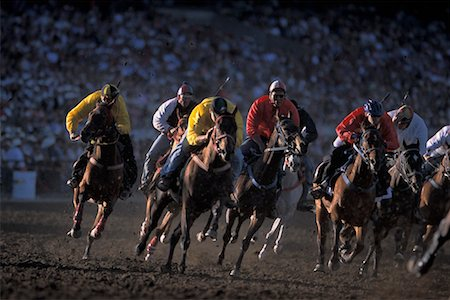 Horse Racing, Calgary Stampede, Calgary, Alberta, Canada Stock Photo - Rights-Managed, Code: 700-00782068