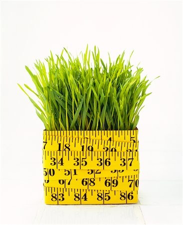 Grass and Measuring Tape Stock Photo - Rights-Managed, Code: 700-00984298