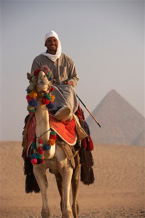 riding crop - Rider on Camel, Giza Pyramids, Giza, Egypt Stock Photo - Rights-Managed, Code: 700-01043611