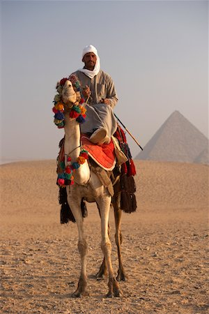 riding crop - Rider on Camel, Giza Pyramids, Giza, Egypt Stock Photo - Rights-Managed, Code: 700-01043612