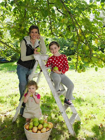 family apple orchard - Family in Orchard Stock Photo - Rights-Managed, Code: 700-01119832