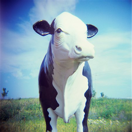Still Life of Cow Statue Stock Photo - Rights-Managed, Code: 700-01248009
