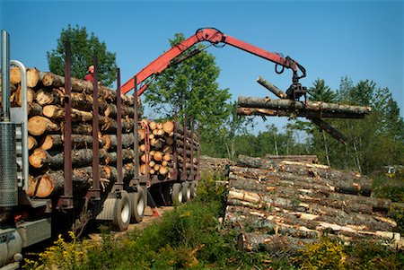 Claw Loading Lumber onto Truck Stock Photo - Rights-Managed, Code: 700-01295616
