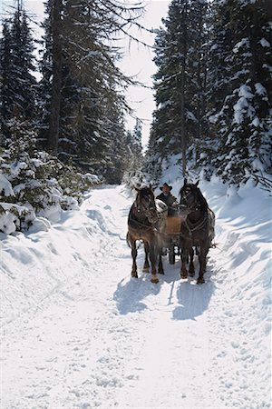 Sleigh Ride Stock Photo - Rights-Managed, Code: 700-01296131
