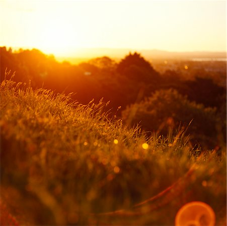 Sunset, New Zealand Stock Photo - Rights-Managed, Code: 700-01345095