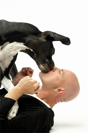 dog kissing man - Dog Kissing Man Stock Photo - Rights-Managed, Code: 700-01429198
