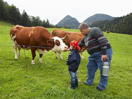 Man and Girl on Dairy Farm Stock Photo - Rights-Managed, Code: 700-01645025