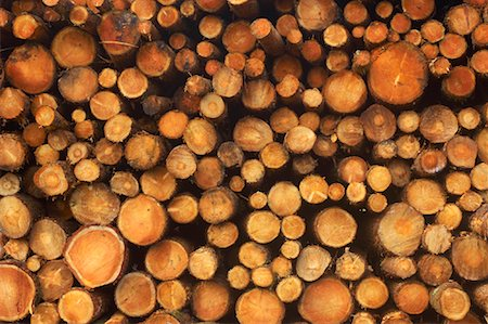 Stack of Wood Stock Photo - Rights-Managed, Code: 700-01788636