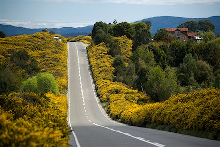 Highway in Los Lagos Region, Chiloe Island, Chile Stock Photo - Rights-Managed, Code: 700-02046896