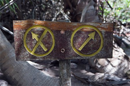 Direction Sign in Forest, Tulum, Mexico Stock Photo - Rights-Managed, Code: 700-02198241