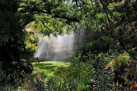 Sprinkler in Garden, Paris, France Stock Photo - Rights-Managed, Code: 700-02265197