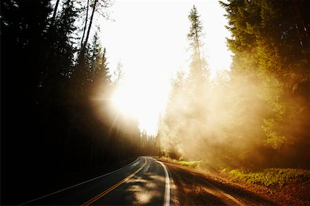 Paved Road through Forest, Pacific Coast Highway, California, USA Stock Photo - Rights-Managed, Code: 700-02265391