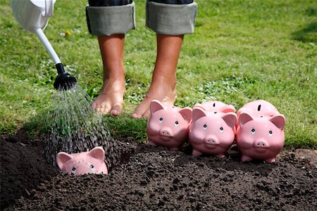 Woman Watering Piggy Banks Stock Photo - Rights-Managed, Code: 700-02289302