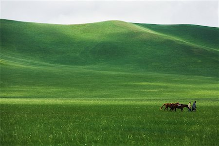 People Leading Horses through Grassland, Inner Mongolia, China Stock Photo - Rights-Managed, Code: 700-02289785