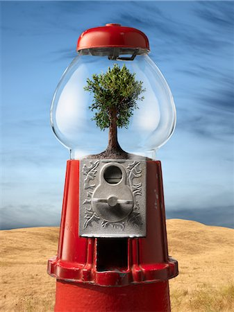 Tree in Gumball Machine by Desert Stock Photo - Rights-Managed, Code: 700-02377619