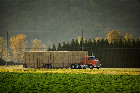 side view tractor trailer truck - Truck Carrying Hay Bales, Chilliwack, British Columbia, Canada Stock Photo - Rights-Managed, Code: 700-02593641