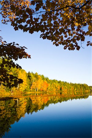 Autumn Forest by Lake, Vermont, USA Stock Photo - Rights-Managed, Code: 700-02669720