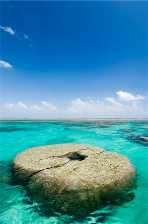 Clear Tropical Water and Coral Reefs, Ishigaki Island, Yaeyama Islands, Okinawa, Japan Stock Photo - Rights-Managed, Code: 700-02698393