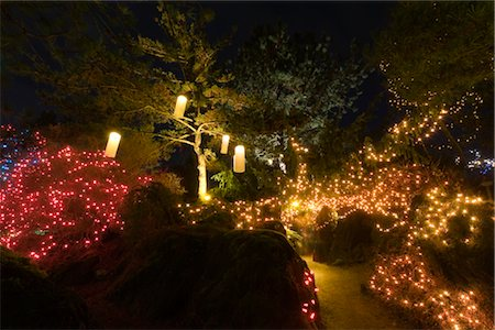 Festival of Lights, VanDusen Botanical Garden, Vancouver, British Columbia, Canada Stock Photo - Rights-Managed, Code: 700-02701299