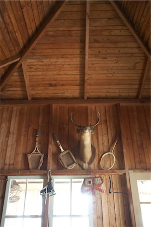deer hunt - Deer Head on Wall in Cabin, Ontario, Canada Stock Photo - Rights-Managed, Code: 700-02738111