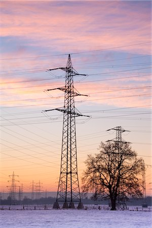 Old Willow Trees by High Voltage Hydro Tower at Sunrise, Siegburg, North Rhine-Westphalia, Germany Stock Photo - Rights-Managed, Code: 700-02756698