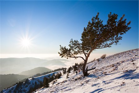 Couple Hiking Up Mount Belchen in Winter, Black Forest, Baden-Wuerttemberg, Germany Stock Photo - Rights-Managed, Code: 700-02756690