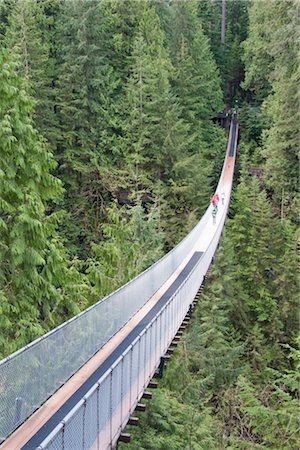 Capilano Suspension Bridge, Vancouver, British Columbia, Canada Stock Photo - Rights-Managed, Code: 700-02912180