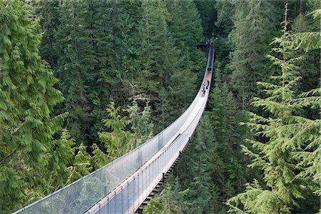 Capilano Suspension Bridge, Vancouver, British Columbia, Canada Stock Photo - Rights-Managed, Code: 700-02912181