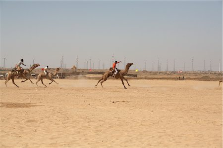 rajasthan camel - Camel Festival, Jaisalmer, Rajasthan, India Stock Photo - Rights-Managed, Code: 700-02957993