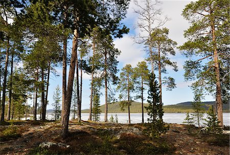 Lake Inari, Lapland, Finland Stock Photo - Rights-Managed, Code: 700-02967662