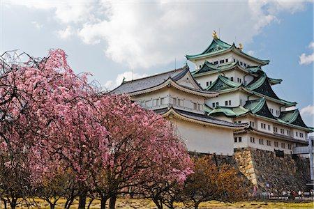 Nagoya Castle, Nagoya, Aichi Prefecture, Chubu, Japan Stock Photo - Rights-Managed, Code: 700-02973218