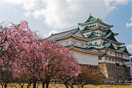 Nagoya Castle, Nagoya, Aichi Prefecture, Chubu, Japan Stock Photo - Rights-Managed, Code: 700-02973218