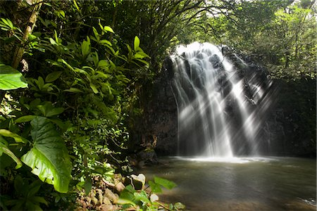 Waterfall, Queensland, Australia Stock Photo - Rights-Managed, Code: 700-03083938