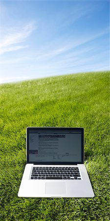 Still Life of Laptop Computer on Grass Stock Photo - Rights-Managed, Code: 700-03178525
