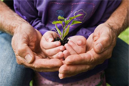 sprout - Hands of Man and Child Holding Seedling Stock Photo - Rights-Managed, Code: 700-03294882