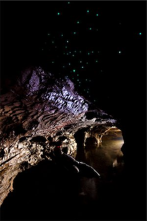 Man Observing Glowworms at the Waitomo Caves, North Island, New Zealand Stock Photo - Rights-Managed, Code: 700-03333615