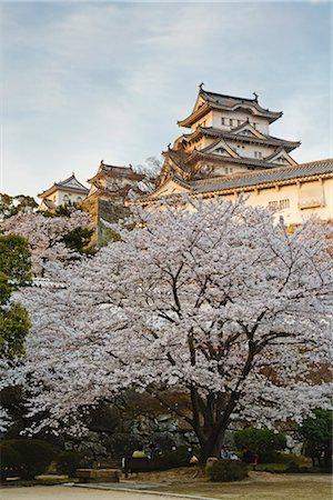 Himeji Castle, Himeji City, Hyogo, Kansai Region, Honshu, Japan Stock Photo - Rights-Managed, Code: 700-03392408