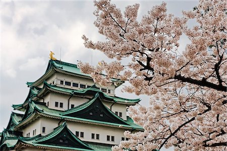 Nagoya Castle, Nagoya, Aichi Prefecture, Chubu Region, Honshu, Japan Stock Photo - Rights-Managed, Code: 700-03392419