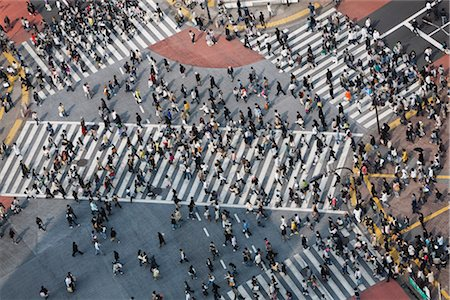 Intersection, Shibuya District, Tokyo, Kanto Region, Honshu, Japan Stock Photo - Rights-Managed, Code: 700-03392428