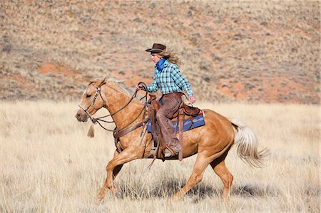 Cowgirl Riding Quarter Horse, Wyoming, USA Stock Photo - Rights-Managed, Code: 700-03407478