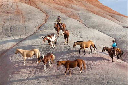 Cowboys during Horse Drive in Badlands, Wyoming, USA Stock Photo - Rights-Managed, Code: 700-03407488